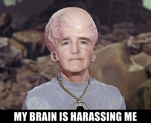 benson_brain_harrassing